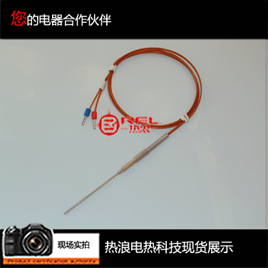 Imported thermocouple